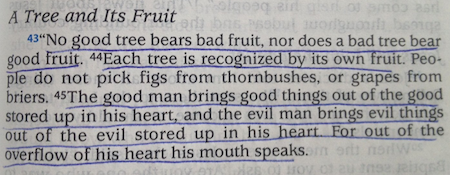Did Jesus Have Habits?